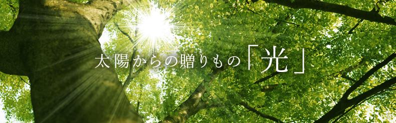 太陽からの贈りもの「光」